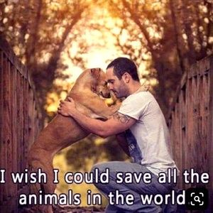 💕FOR THE 💕 ANIMALS!💕